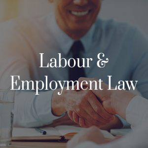Labour & Employment Law Toronto